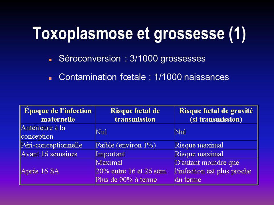 Toxoplasmose et grossesse (1) n Séroconversion : 3/1000 grossesses n Contamination fœtale : 1/1000 naissances