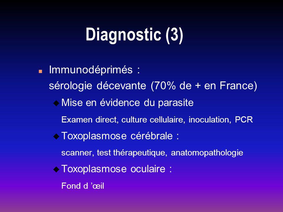 Diagnostic (3) n Immunodéprimés : sérologie décevante (70% de + en France) u Mise en évidence du parasite Examen direct, culture cellulaire, inoculation, PCR u Toxoplasmose cérébrale : scanner, test thérapeutique, anatomopathologie u Toxoplasmose oculaire : Fond d œil