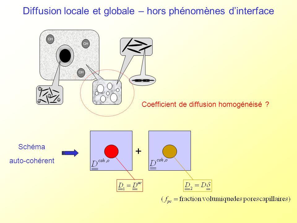 CH Diffusion locale et globale – hors phénomènes dinterface Coefficient de diffusion homogénéisé ? Schéma auto-cohérent +