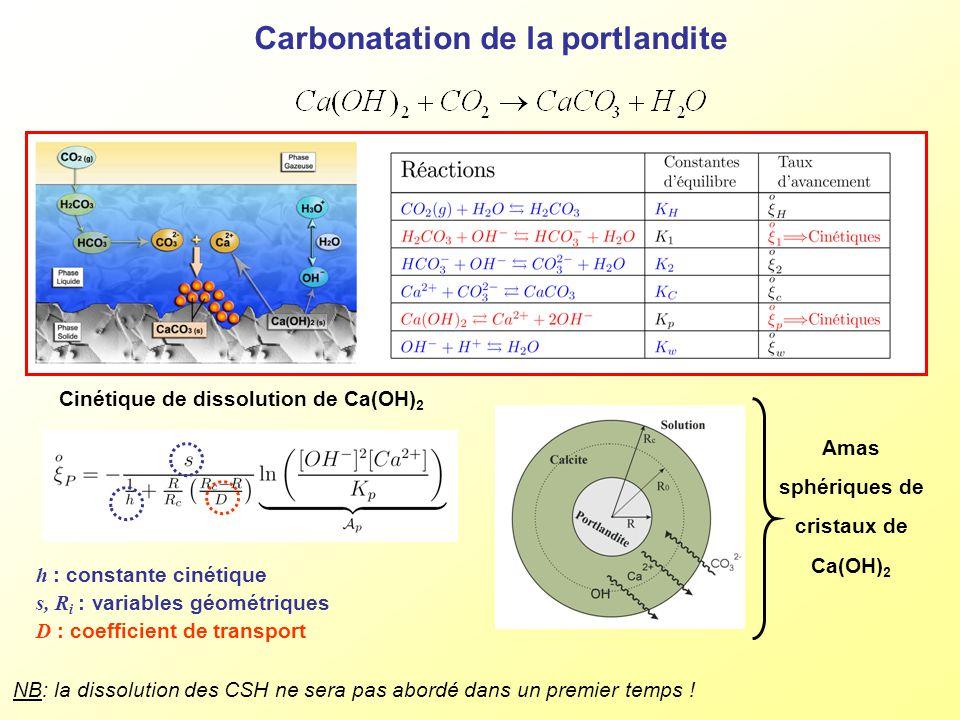 Carbonatation de la portlandite Amas sphériques de cristaux de Ca(OH) 2 Cinétique de dissolution de Ca(OH) 2 h : constante cinétique s, R i : variable