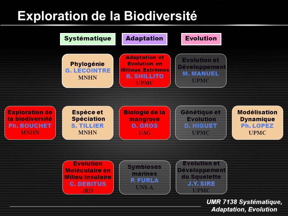 UMR 7138 Systématique, Adaptation, Evolution Exploration de la Biodiversité Phylogénie G. LECOINTRE MNHN Espèce et Spéciation S. TILLIER MNHN Systémat