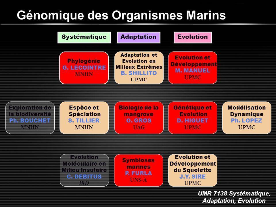 UMR 7138 Systématique, Adaptation, Evolution Génomique des Organismes Marins Phylogénie G. LECOINTRE MNHN Espèce et Spéciation S. TILLIER MNHN Systéma