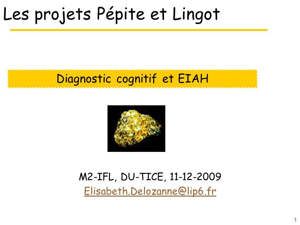 1 Les projets Pépite et Lingot M2-IFL, DU-TICE, 11-12-2009 Elisabeth.Delozanne@lip6.fr Diagnostic cognitif et EIAH