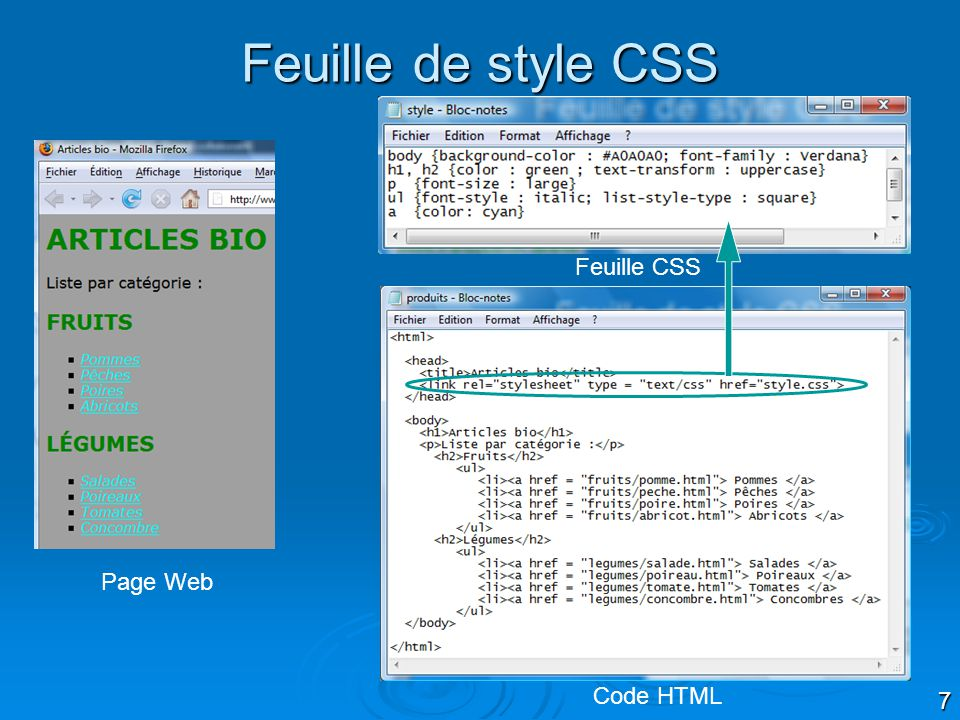 7 Feuille de style CSS Page Web Code HTML Feuille CSS