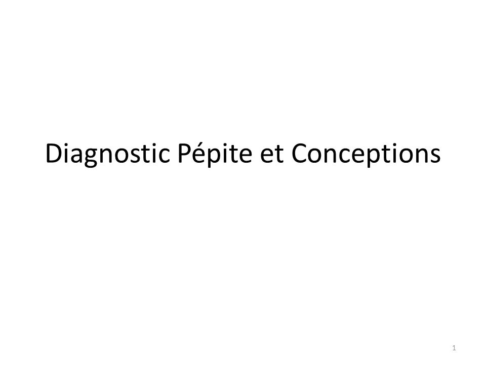 1 Diagnostic Pépite et Conceptions