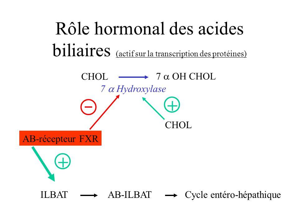 Rôle hormonal des acides biliaires (actif sur la transcription des protéines) CHOL 7 OH CHOL 7 Hydroxylase AB-récepteur FXR ILBATAB-ILBATCycle entéro-