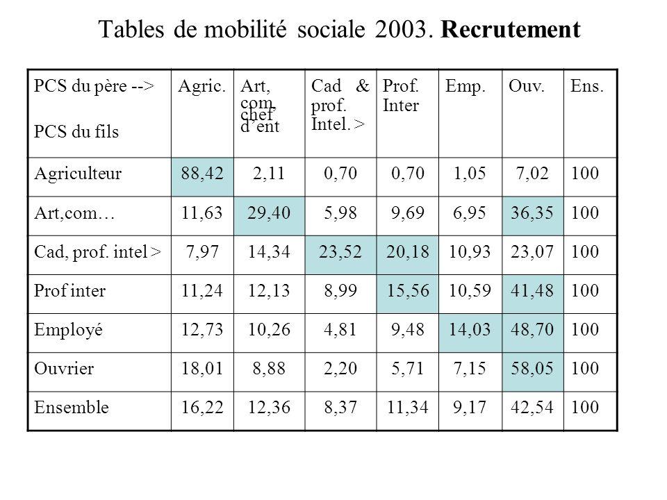 Tables de mobilité sociale 2003.
