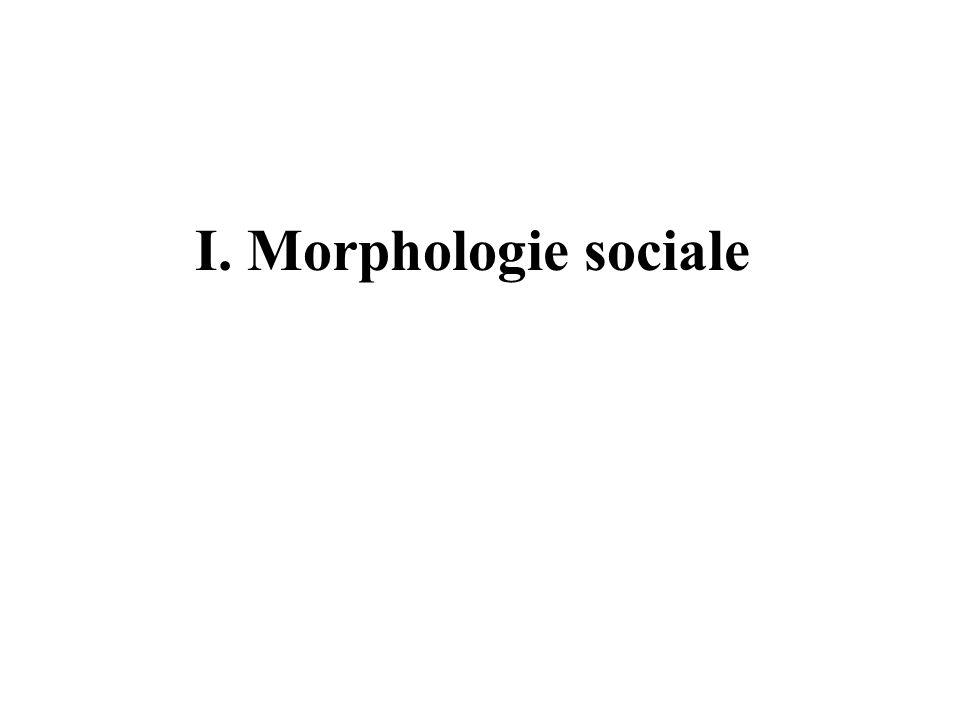 I. Morphologie sociale