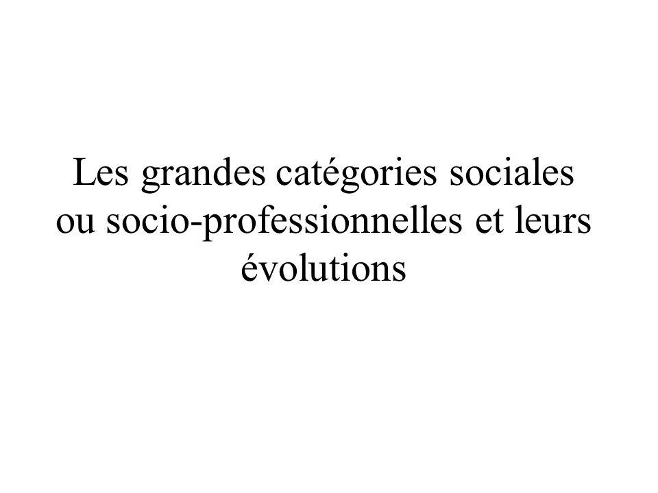 Les grandes catégories sociales ou socio-professionnelles et leurs évolutions