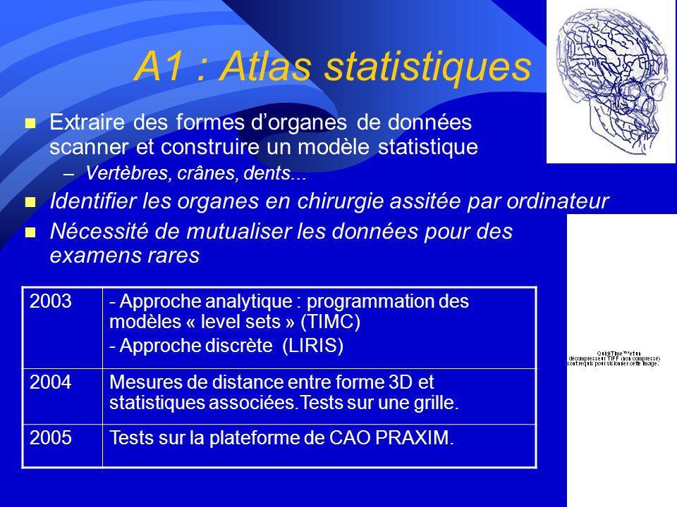 Lot 1 : Les applications A1 : Atlas statistique A2 : Mammographie (indexation) A3 : Modélisation du myocarde A4 : Simulation IRM A5 : Génomique