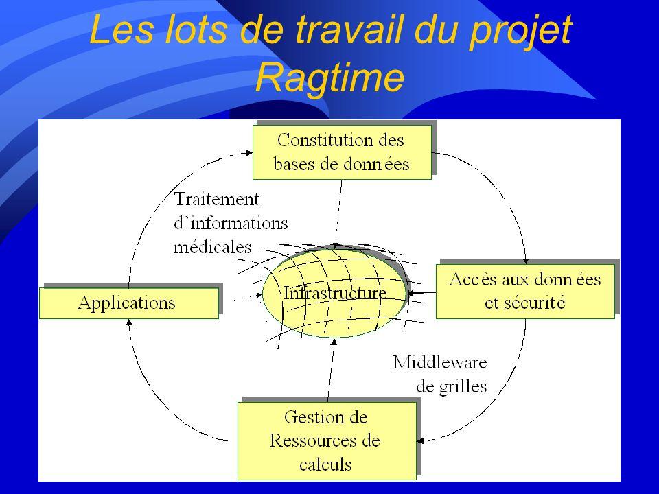 Objectifs du projet n Grilles de calculs –mutualisation de ressources informatiques –rendues célèbres par SETI@HOME, Napster, le Décrypton n Domaines