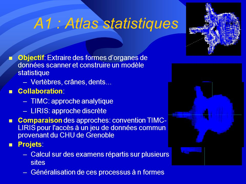 Lot 1 : Les applications A1 : Atlas statistique A2 : Mammographie (indexation) A3 : Modélisation du myocarde A4 : Simulation IRM A5 : Génomique A6: Fu