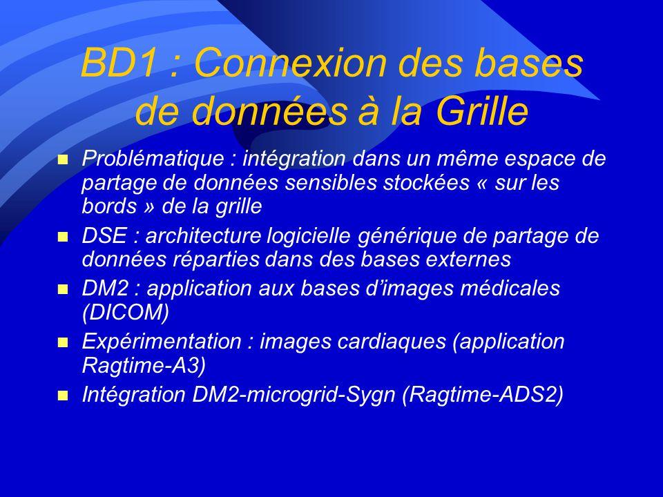 Lot 2 : Constitution des bases de données n BD1 : Connexion des bases de données (PACS, dossiers médicaux) à la grille n BD2 : Visualisation et naviga