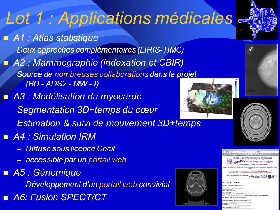 Lot 1 : Applications médicales n A1 : Atlas statistique Deux approches complémentaires (LIRIS-TIMC) n A2 : Mammographie (indexation et CBIR) Source de nombreuses collaborations dans le projet (BD - ADS2 - MW - I) n A3 : Modélisation du myocarde Segmentation 3D+temps du cœur Estimation & suivi de mouvement 3D+temps n A4 : Simulation IRM –Diffusé sous licence Cecil –accessible par un portail web n A5 : Génomique –Développement dun portail web convivial n A6: Fusion SPECT/CT