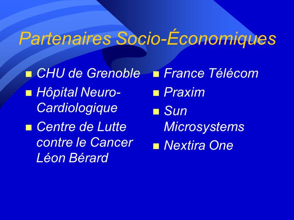 Partenaires Socio-Économiques n CHU de Grenoble n Hôpital Neuro- Cardiologique n Centre de Lutte contre le Cancer Léon Bérard n France Télécom n Praxim n Sun Microsystems n Nextira One
