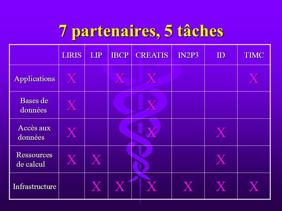 7 partenaires, 5 tâches LIRISLIPIBCPCREATISIN2P3IDTIMC ApplicationsXXXX Bases de données XX Accès aux données XXX Ressources de calcul XXX InfrastructureXXXXXX