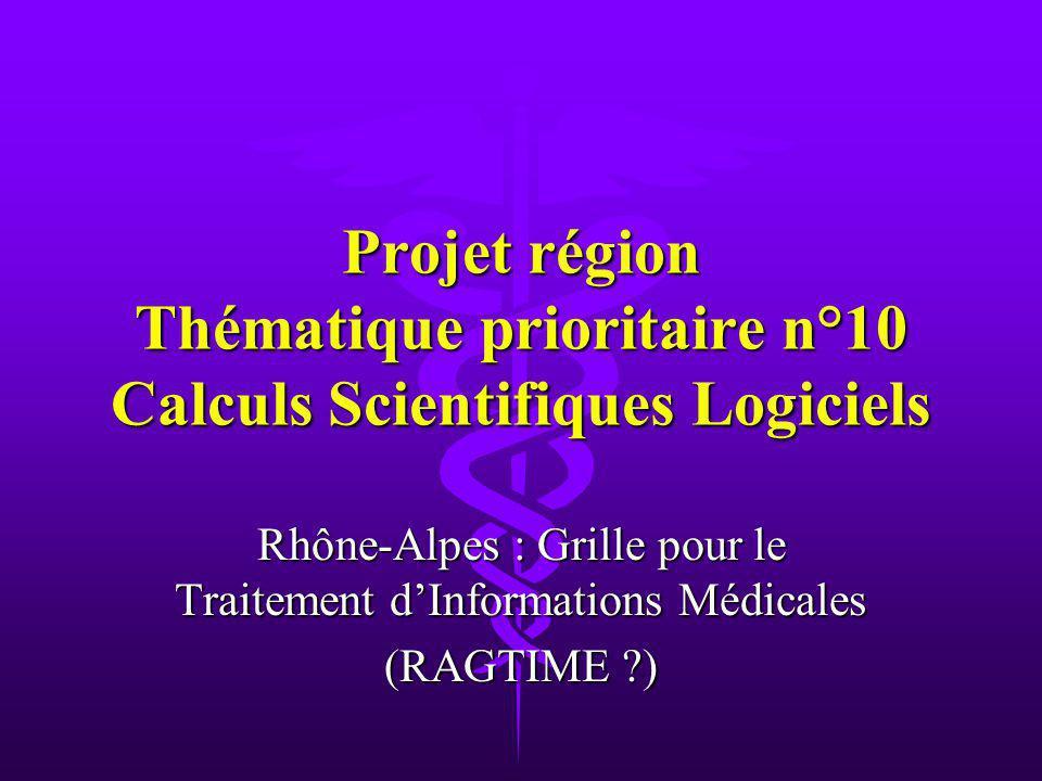 Projet région Thématique prioritaire n°10 Calculs Scientifiques Logiciels Rhône-Alpes : Grille pour le Traitement dInformations Médicales (RAGTIME )