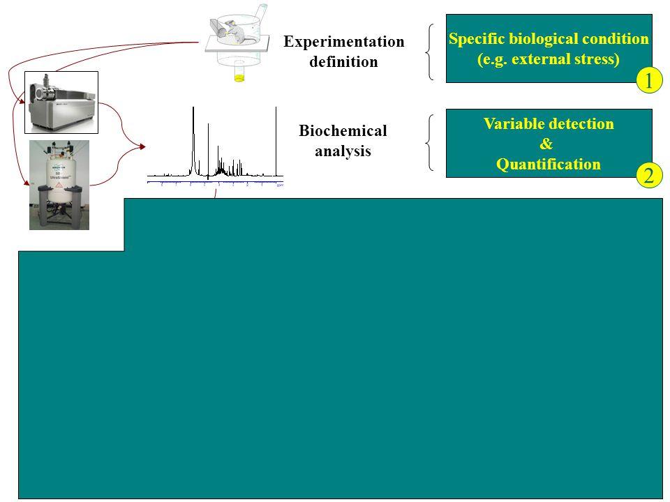 Fabien Jourdan, FDC06 Variable detection & Quantification Biochemical analysis Variable filrtation AFD & Classification Statistical Chemiometrical Bio