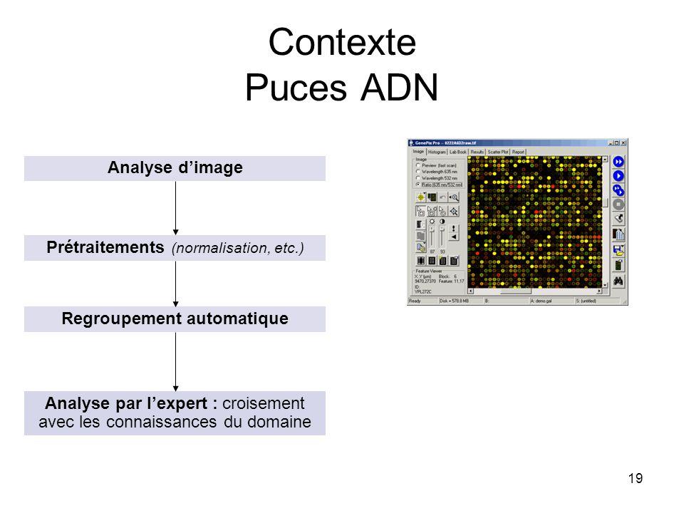 19 Contexte Puces ADN Analyse dimage Prétraitements (normalisation, etc.) Regroupement automatique Analyse par lexpert : croisement avec les connaissa