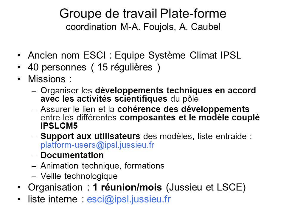Groupe de travail Plate-forme coordination M-A. Foujols, A.