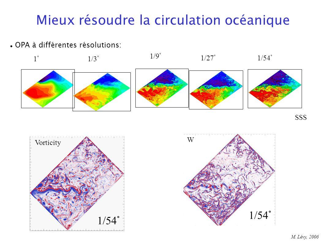 1°1/3° 1/9° 1/27°1/54° SSS Vorticity W 1/54° M. Lévy, 2006 Mieux résoudre la circulation océanique OPA à différentes résolutions: