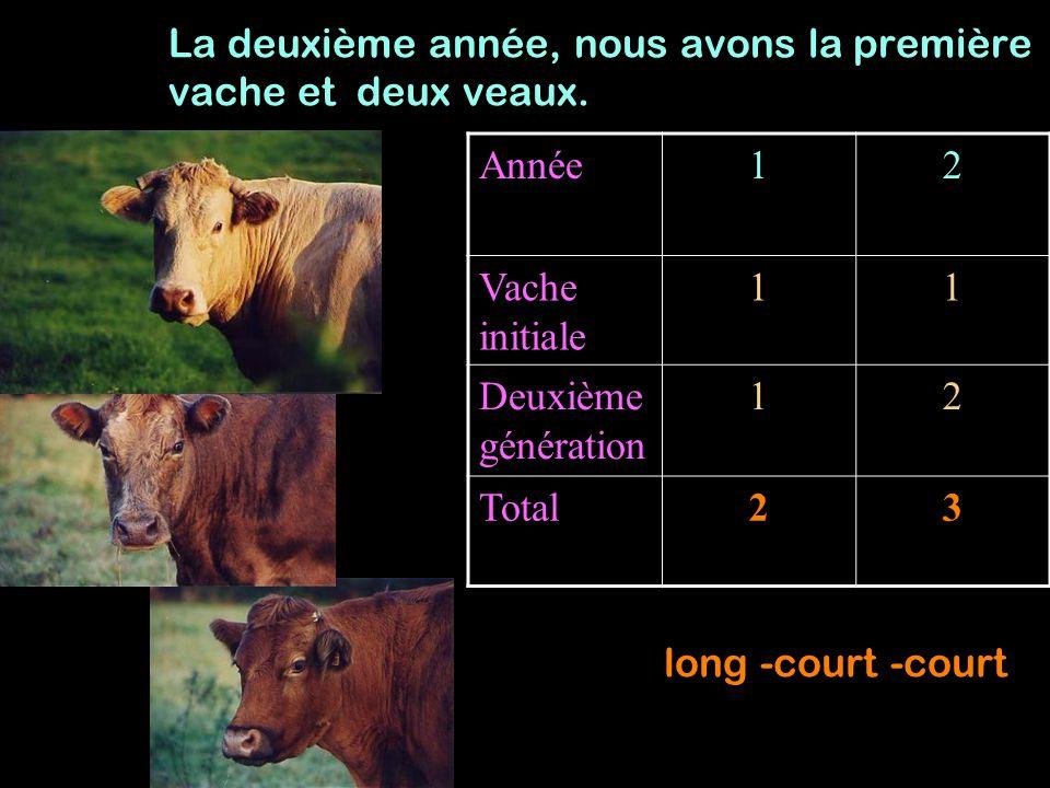 Année12 Vache initiale 11 Deuxième génération 12 Total23 La deuxième année, nous avons la première vache et deux veaux. long -court -court