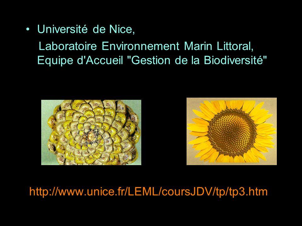 http://www.unice.fr/LEML/coursJDV/tp/tp3.htm Université de Nice, Laboratoire Environnement Marin Littoral, Equipe d'Accueil