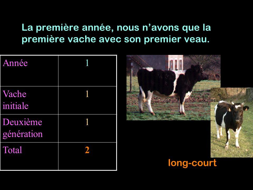 Année12 Vache initiale 11 Deuxième génération 12 Total23 La deuxième année, nous avons la première vache et deux veaux.
