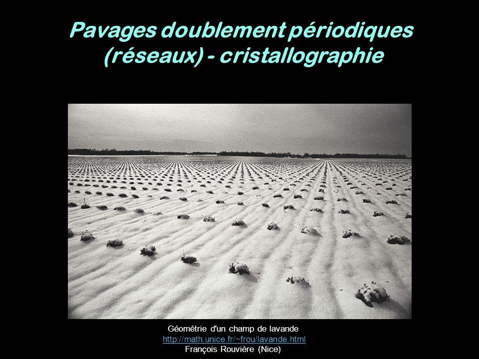 Géométrie d'un champ de lavande http://math.unice.fr/~frou/lavande.html François Rouvière (Nice)http://math.unice.fr/~frou/lavande.html Pavages double