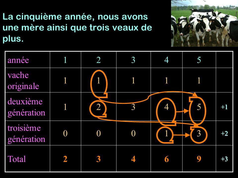 Année123456 Vache originale 111111 Deuxième génération 123456 Troisième génération 000136 Total2346913 La sixième année, nous avons 4 mères, 4 jeunes veaux, et un troupeau de 13 têtes.