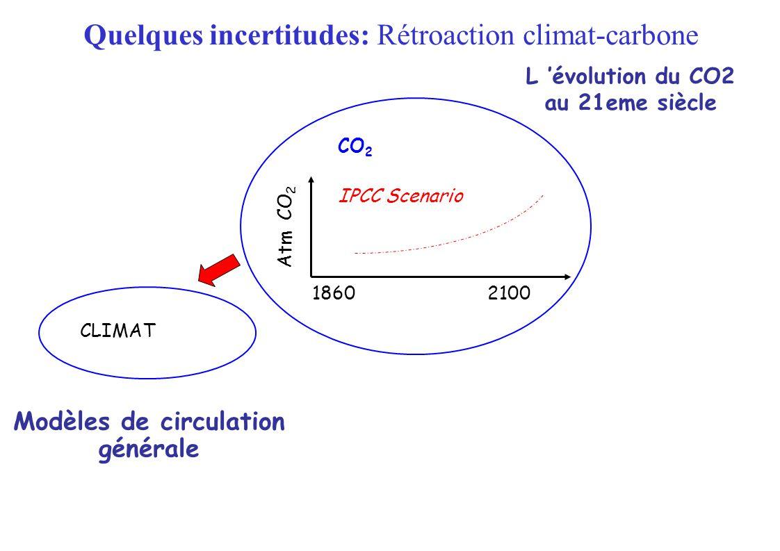 L évolution du CO2 au 21eme siècle CLIMAT 18602100 IPCC Scenario CO 2 Atm CO 2 Modèles de circulation générale Quelques incertitudes: Rétroaction climat-carbone
