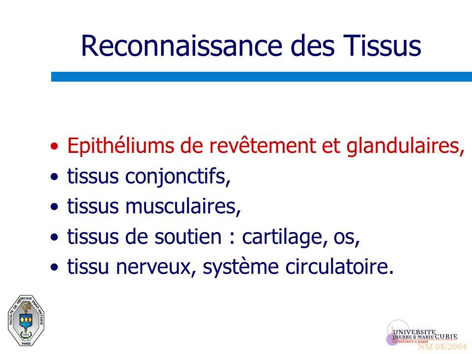 Reconnaissance des Tissus Epithéliums de revêtement et glandulaires, tissus conjonctifs, tissus musculaires, tissus de soutien : cartilage, os, tissu