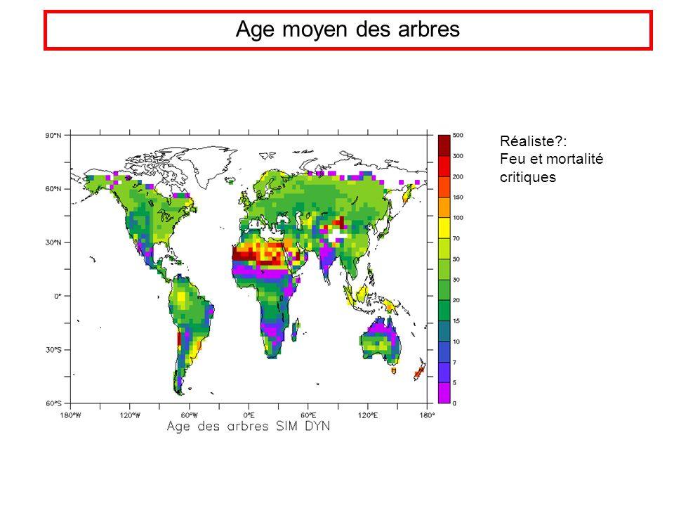 Age moyen des arbres Réaliste?: Feu et mortalité critiques