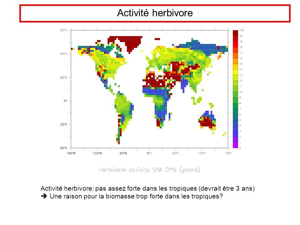 Activité herbivore Activité herbivore: pas assez forte dans les tropiques (devrait être 3 ans) Une raison pour la biomasse trop forte dans les tropiques