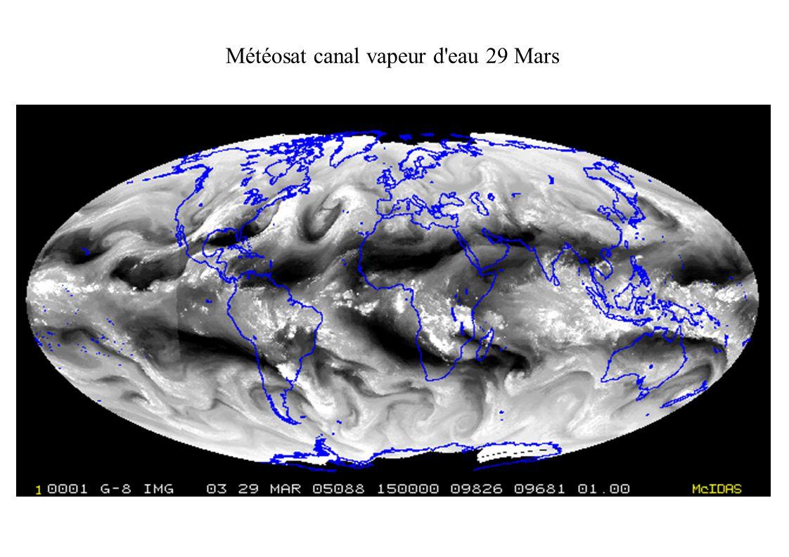 Météosat canal vapeur d eau 29 Mars