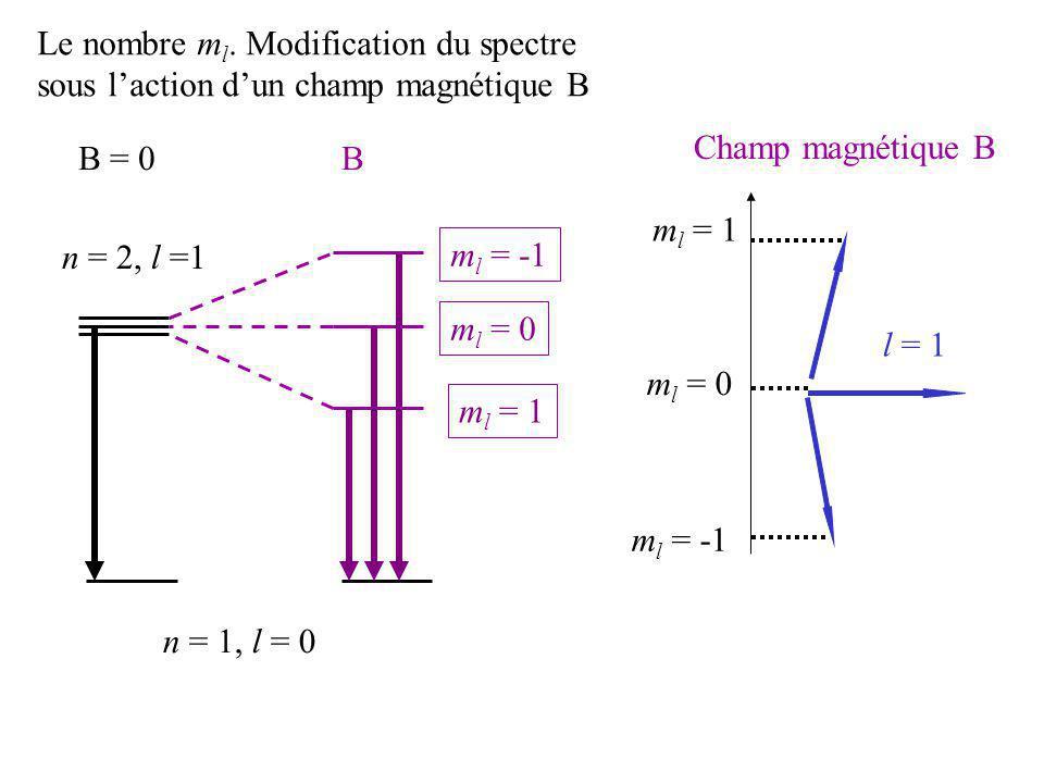 Champ magnétique B l = 1 m l = 1 m l = 0 m l = 1 n = 2, l =1 n = 1, l = 0 m l = -1 m l = 0 m l = -1 B = 0B Le nombre m l. Modification du spectre sous