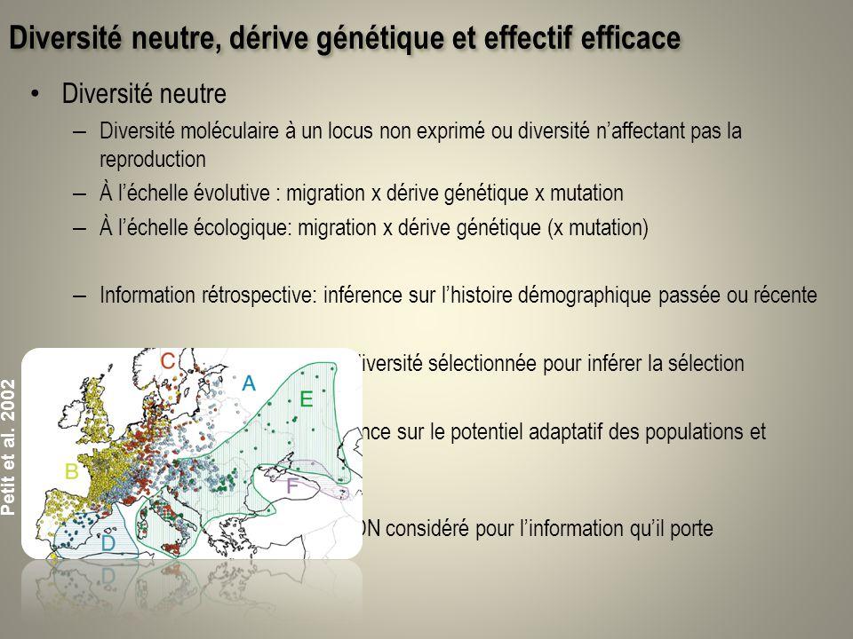Diversité neutre, dérive génétique et effectif efficace Diversité neutre – Diversité moléculaire à un locus non exprimé ou diversité naffectant pas la