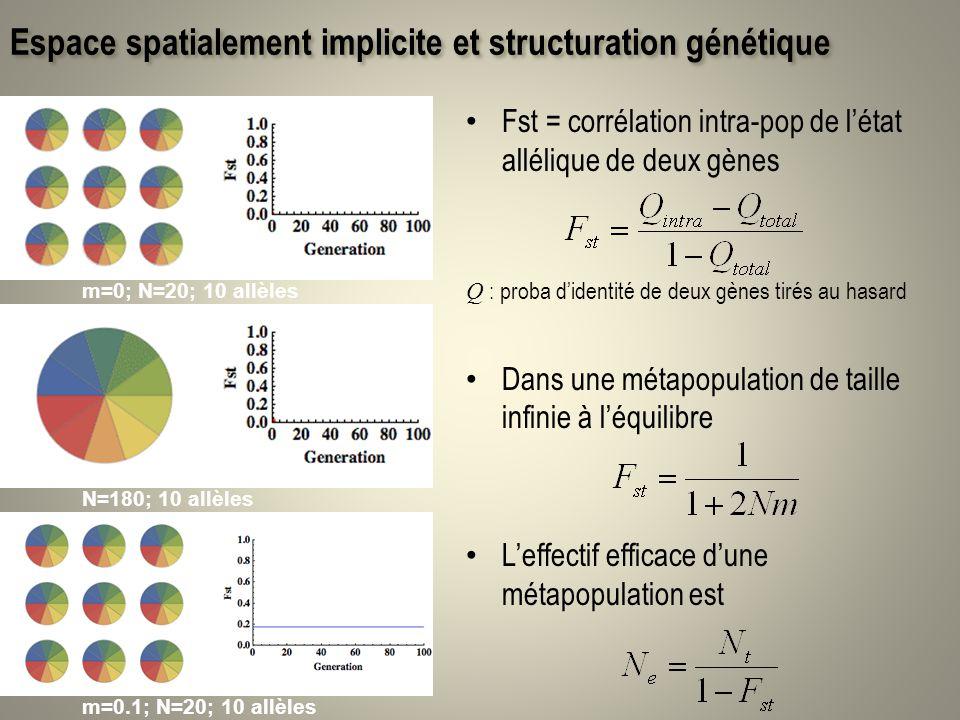 Espace spatialement implicite et structuration génétique Fst = corrélation intra-pop de létat allélique de deux gènes Q : proba didentité de deux gène