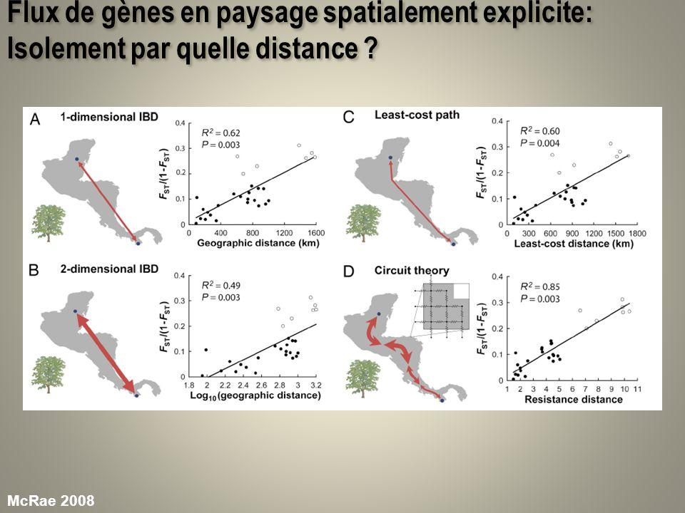 Flux de gènes en paysage spatialement explicite: Importance de la dispersion à longue distance (LDD) Le noyau de dispersion: – Échelle de la dispersion :, 2 – Forme de la dispersion (LDD): kurtosis, vitesse de décroissance de la fonction de dispersion… Seulement léchelle affecte la pente de lautocorrélogramme Mais la forme affecte lordonnée à lorigine donc le niveau de différenciation globale