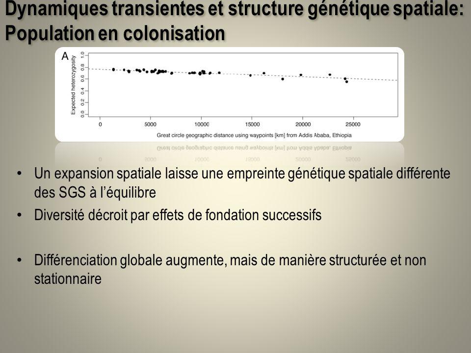 Dynamiques transientes et structure génétique spatiale: Population en colonisation Un expansion spatiale laisse une empreinte génétique spatiale diffé