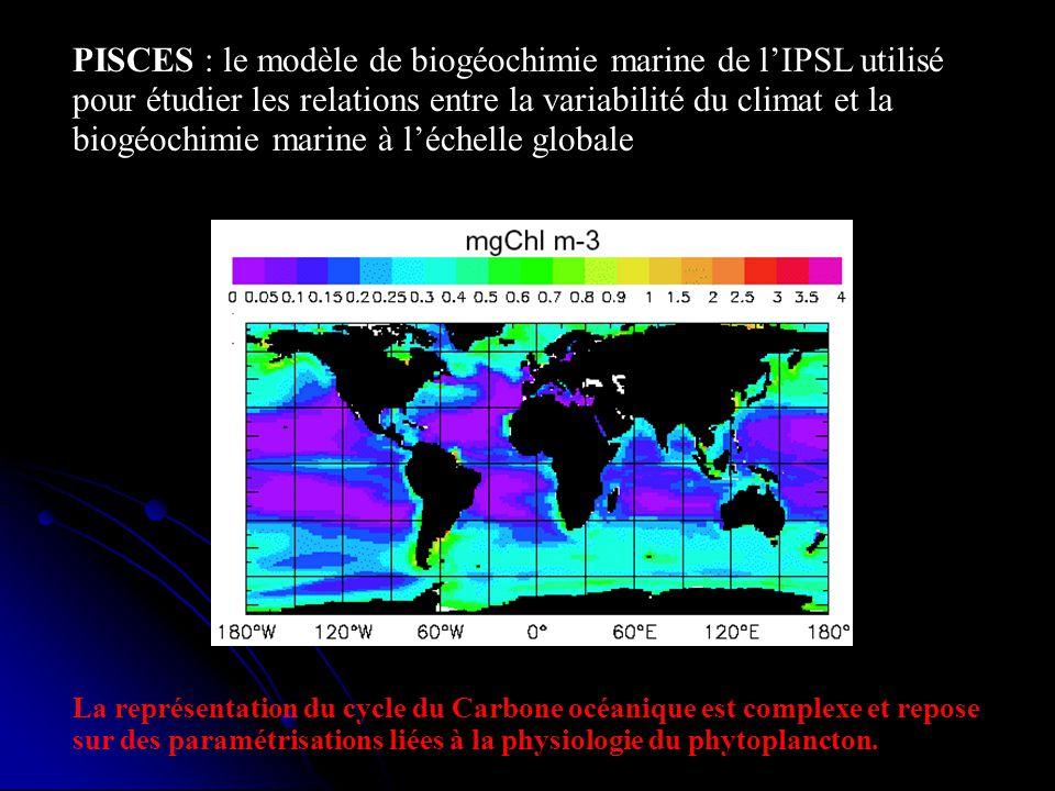 PISCES : le modèle de biogéochimie marine de lIPSL utilisé pour étudier les relations entre la variabilité du climat et la biogéochimie marine à léche