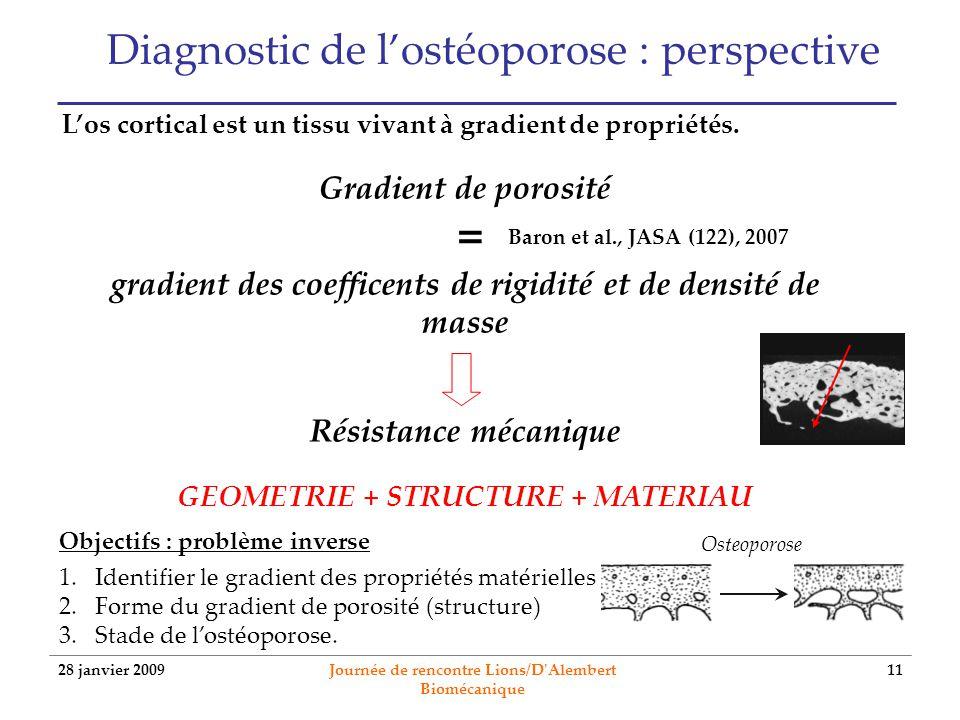 28 janvier 2009 Journée de rencontre Lions/D'Alembert Biomécanique 11 Diagnostic de lostéoporose : perspective Los cortical est un tissu vivant à grad