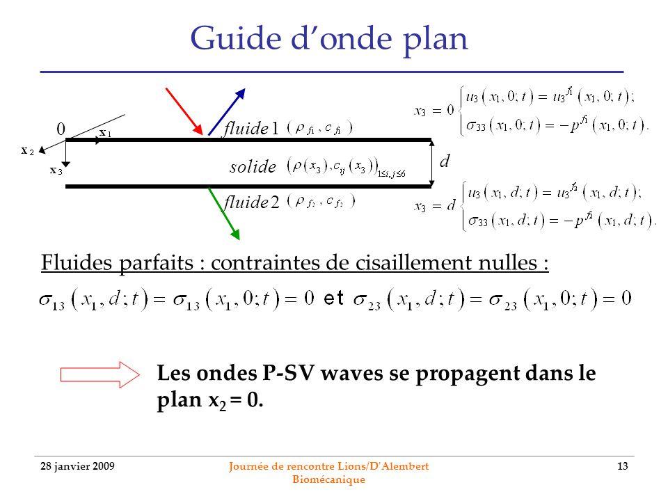 28 janvier 2009 Journée de rencontre Lions/D'Alembert Biomécanique 13 Guide donde plan fluide 1 fluide 2 solide 0 d Fluides parfaits : contraintes de