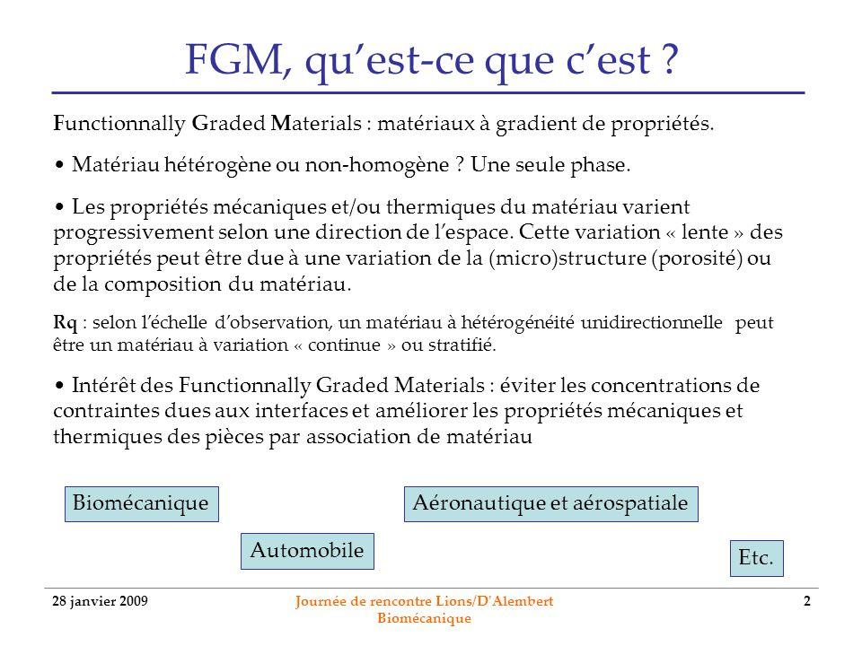 28 janvier 2009 Journée de rencontre Lions/D'Alembert Biomécanique 2 FGM, quest-ce que cest ? BiomécaniqueAéronautique et aérospatiale Functionnally G