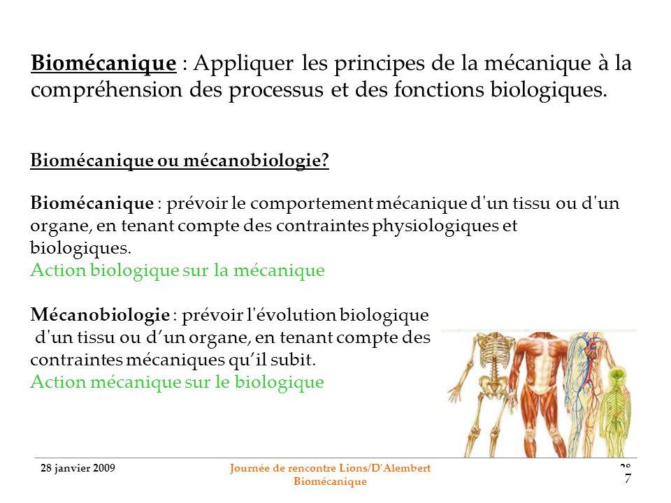 28 janvier 2009 Journée de rencontre Lions/D'Alembert Biomécanique 28 Biomécanique : Appliquer les principes de la mécanique à la compréhension des pr