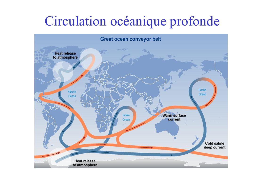 Circulation océanique profonde