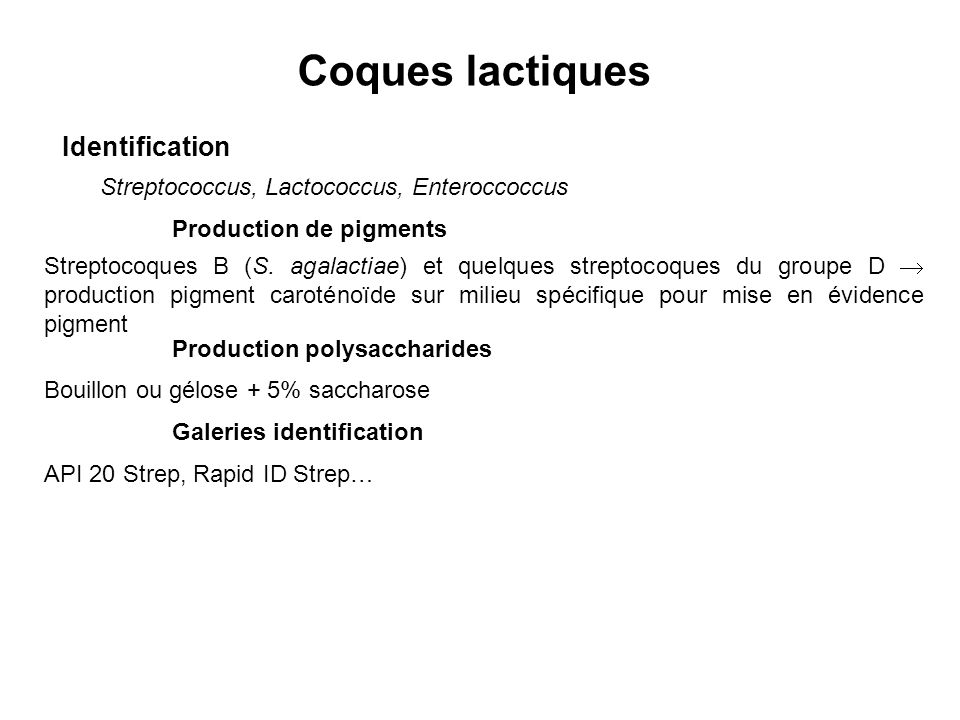 Coques lactiques Identification Streptococcus, Lactococcus, Enteroccoccus Production de pigments Streptocoques B (S. agalactiae) et quelques streptoco
