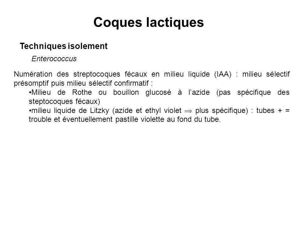 Coques lactiques Techniques isolement Enterococcus Numération des streptocoques fécaux en milieu liquide (IAA) : milieu sélectif présomptif puis milieu sélectif confirmatif : Milieu de Rothe ou bouillon glucosé à lazide (pas spécifique des steptocoques fécaux) milieu liquide de Litzky (azide et ethyl violet plus spécifique) : tubes + = trouble et éventuellement pastille violette au fond du tube.