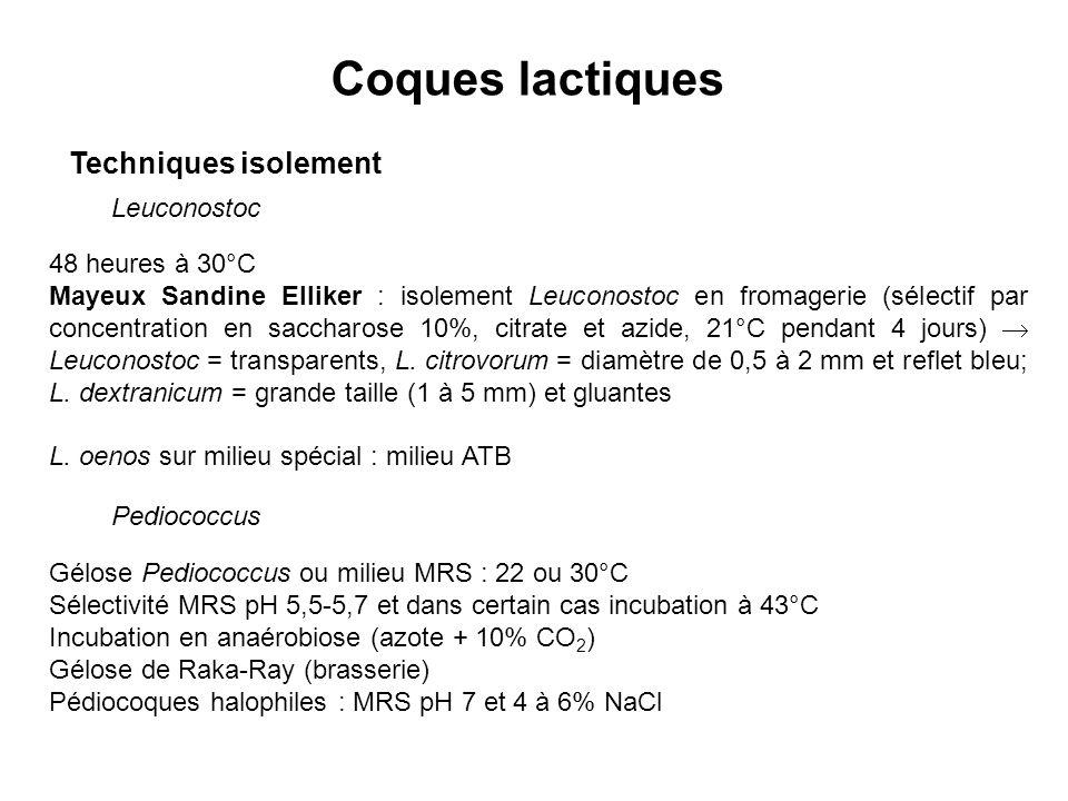 Coques lactiques Techniques isolement Leuconostoc 48 heures à 30°C Mayeux Sandine Elliker : isolement Leuconostoc en fromagerie (sélectif par concentration en saccharose 10%, citrate et azide, 21°C pendant 4 jours) Leuconostoc = transparents, L.