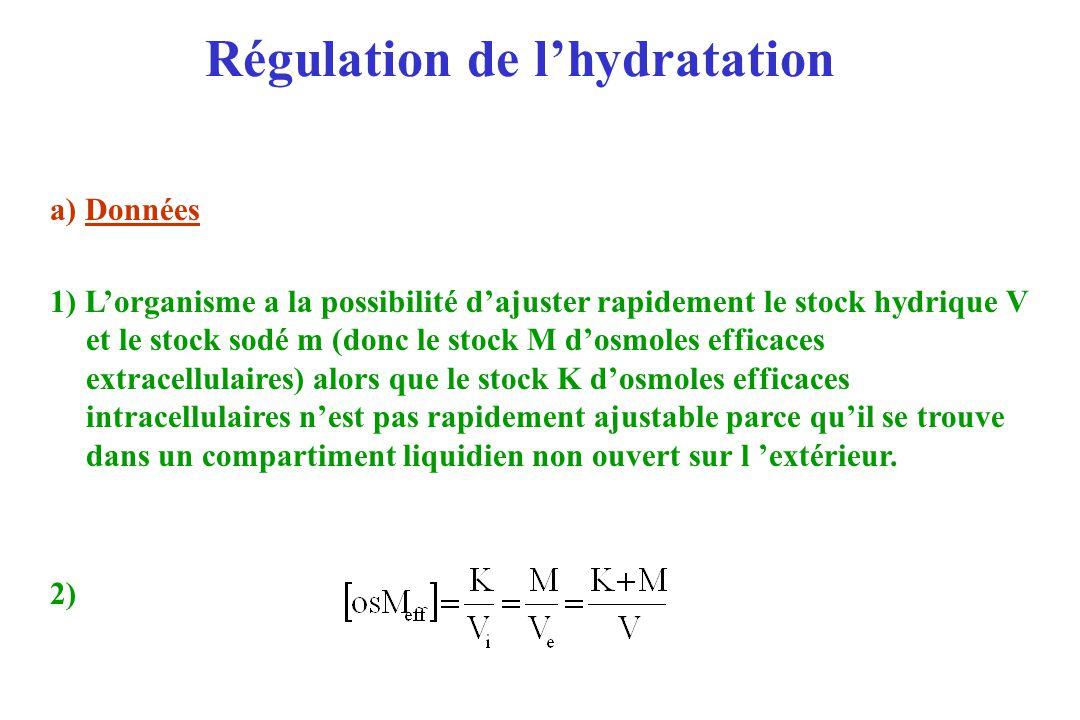 Régulation de lhydratation a) Données 1) Lorganisme a la possibilité dajuster rapidement le stock hydrique V et le stock sodé m (donc le stock M dosmo